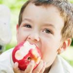 Питание ребенка-аллергика