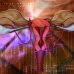 Фертильность женщин — что это ?