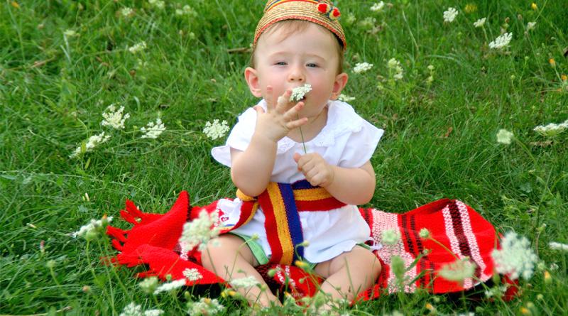 Раннее развитие детей в вальдорфских традициях