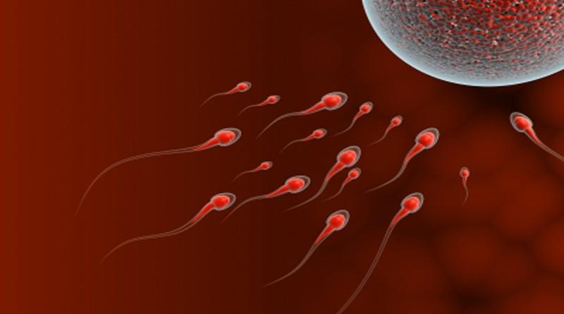 Можно ли забеременеть, принимая противозачаточные
