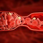 Определение пола ребенка по обновлению крови