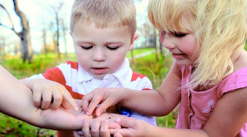 развитие позначательной активности ребенка