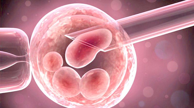 Хэтчинг эмбрионов