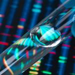 Установление отцовства по ДНК